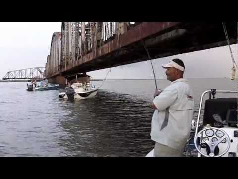 Speckled Trout Return To L&N Train Bridge With Eric Dumas.mov