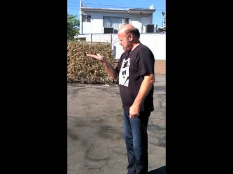 Rex Linn Releases a Butterfly