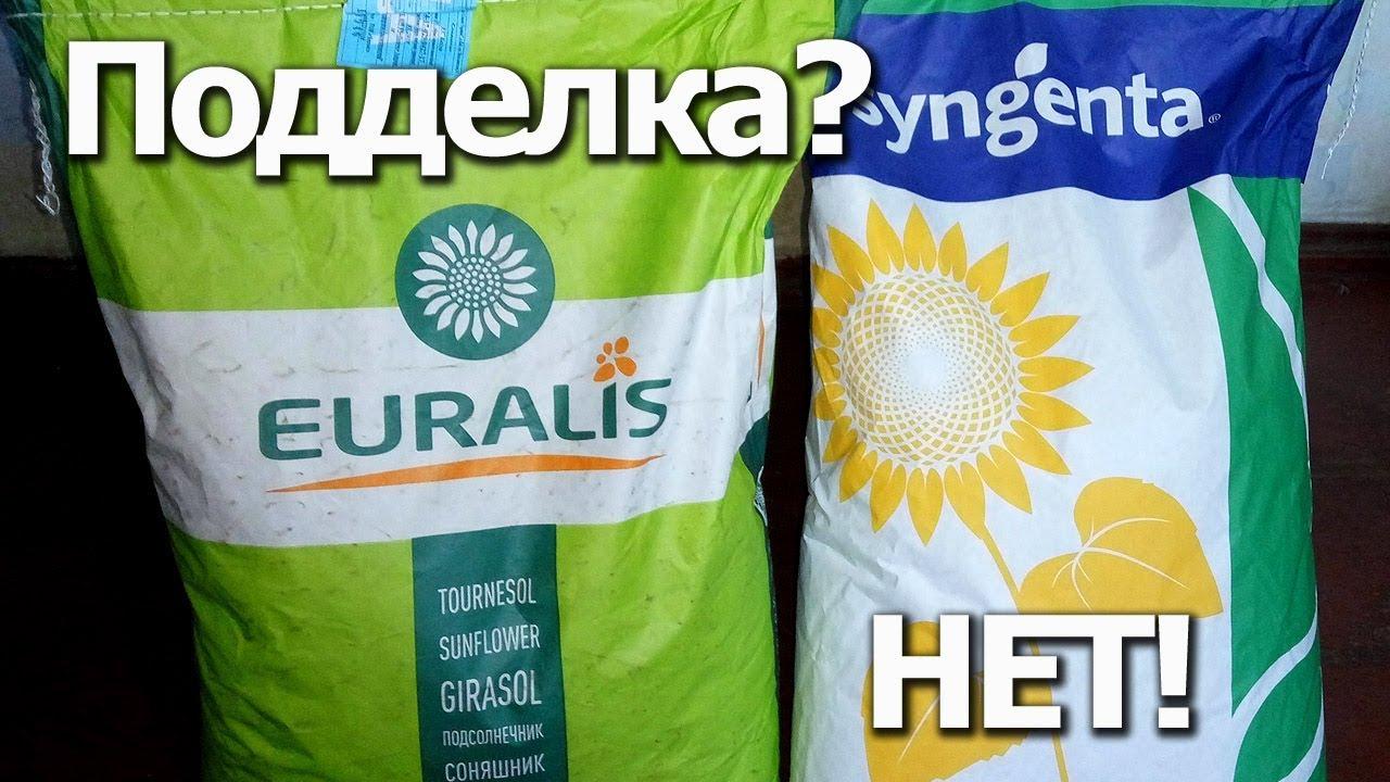 Семена подсолнечника ❱❱❱ купить в интернет-магазине семян 【 урожай 】 ➤ лучшие цены на опт и розницу ➤ доставка почтой по украине.