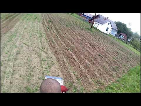 ХТЗ Т-012. Борьба с сорняками.