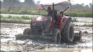 Tractor Cultivation Working Preparing the Rice Fields កសិករធ្វើស្រែនៅកម្ពុជា