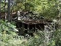 Abandoned Home Hidden in the Woods