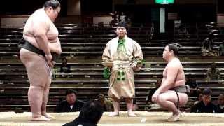 Orora (0-1) - Masumiura (1-0) , Sumo : Natsubasho 2013