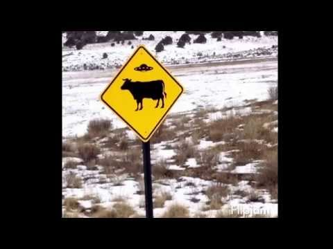 US Xpress dedicated Target Colorado and New Mexico winter 2014 runs Tim Bassett and Davidson O'neill