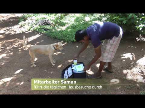 Geschichten aus der Dog Care Clinic - Teil 2