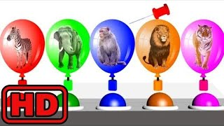 Kid -Kids -Popping Colored Farm Animal Balloons/Learn ZOO Animals And Colors For Children/ZOO Anima