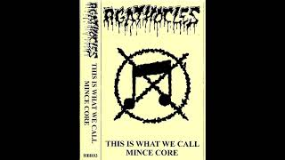 Agathocles - This Is What We Call Mincecore (2013) grindcore mincecore punk goregrind grind hardcore YouTube Videos