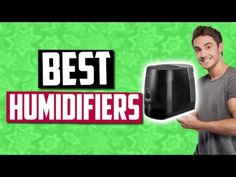 Best Humidifiers In 2020 [Top 5 Picks]