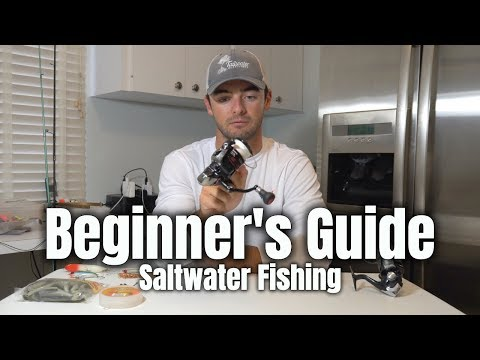 Beginner's Guide To Saltwater Fishing: What Do You Need?