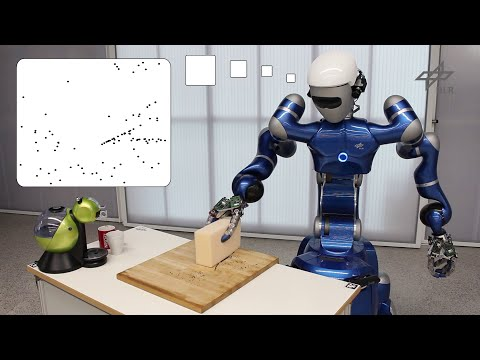 Planning and Execution of Daily Cleaning Tasks with the Humanoid Service Robot Rollin' Justin