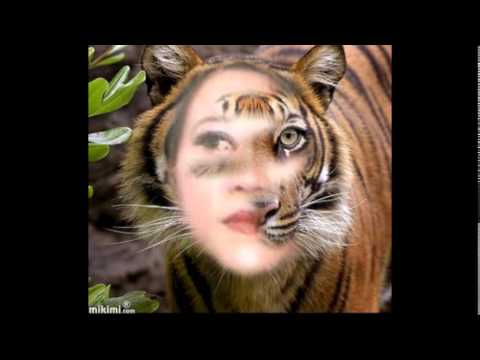 Aku Dan Kamu Satu ( Ost.Manusia Aku Harimau )