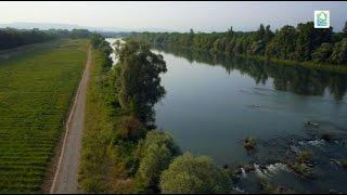 Der Hochwasserrückhalteraum Weil-Breisach - Neuland für den Oberrhein