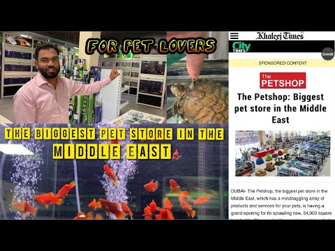 THE BIGGEST PET STORE IN THE MIDDLE EAST | FOR PET LOVERS || പെറ്റ് സ്നേഹികൾക്ക് വേണ്ടി...
