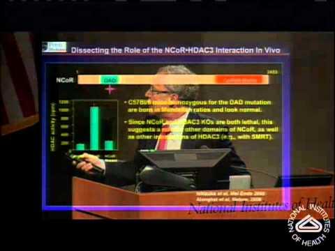 Nuclear Receptors and the Epigenomic Regulation of Metabolism