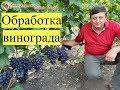 Схема обработки винограда mp3