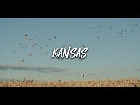 Duck Hunting- Kansas Mallards (40 Mallards In 40 Minutes)
