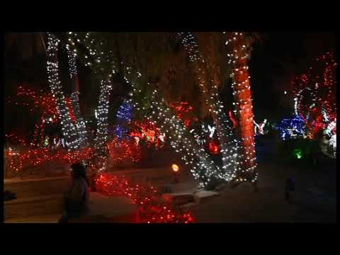 2017 Ethel M Chocolates Cactus Garden Christmas Lights Youtube
