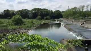 狭山市 笹井ダム