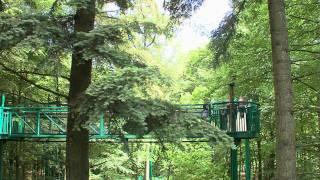 Roompot Vakanties - Sfeerimpressie Vakantiepark Hunzedal
