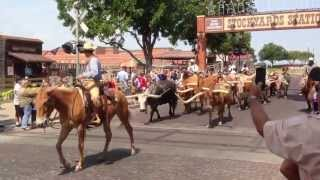 A Visit to Fort Worth Texas