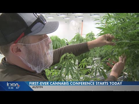 Austin's marijuana entrepreneurs to talk business at new conference