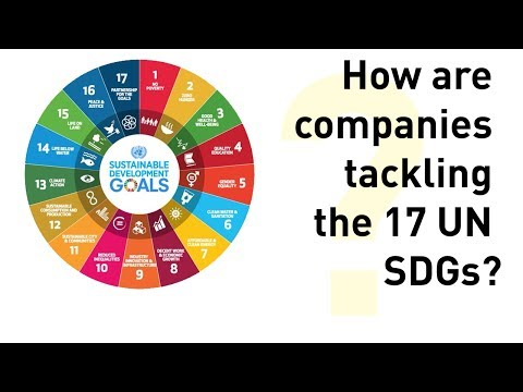 Survey Report & Analysis on the Sustainable Development Goals (SDGs)