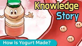 요구르트는 어떻게 만들어 질까요? How Is Yogu…
