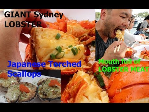 Sydney Fish Market Freshest Seafood Offered In Entire NSW Australia