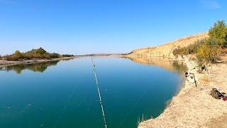 Рыбалка река Или супер место ни одной п