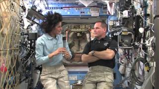 Space Station Crew Discusses Life in Space with the Media