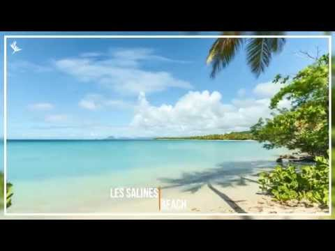 Timelapse Discover Martinique HD