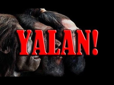 Türk Halkı'nın Evrim Hakkındaki Düşünceleri