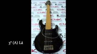 Afinador de Contrabaixo - Bass Tuner 440 Hz - 5 Cordas