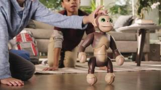 zoomer spin master presents zoomer chimp tv commercial