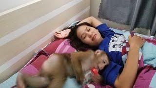 Monkey Baby Nui Wake up mom