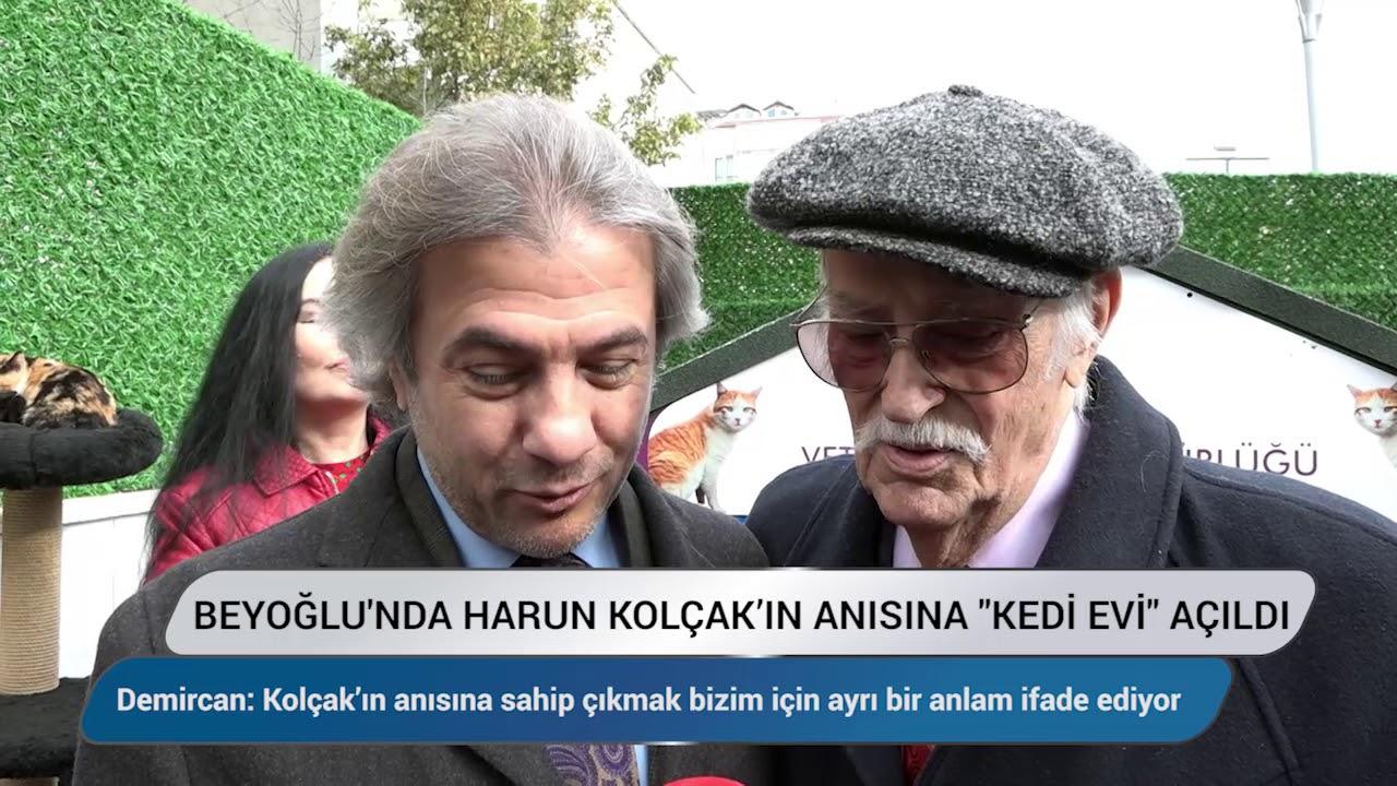 Beyoğlu'nda Harun Kolçak anısına kedi evi açıldı