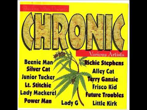 Chronic riddim Mix 1995 (Shocking Vibes) By Djeasy
