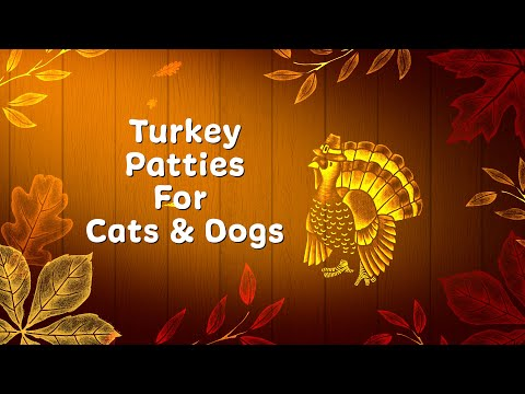 DIY Recipe: Thanksgiving Turkey Patties For Cats & Dogs