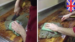 ร้านซูชิถูกกระหน่ำ โพสต์วิดิโอโชว์วิธีเตรียมปลา