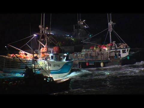 Nova Scotia Lobster Season Starts