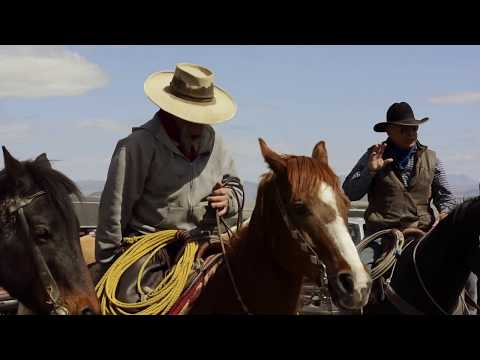 Ranching The Endangered West | Modern Cowboy Documentary