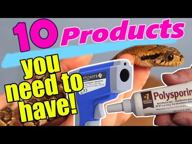 10-products-every-snake-owner-should-have