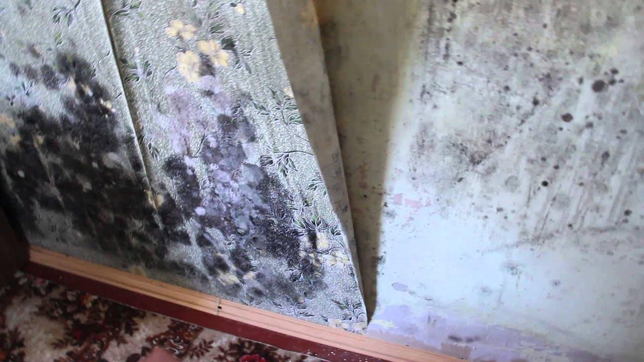 Почему чернеют углы в кирпичном доме