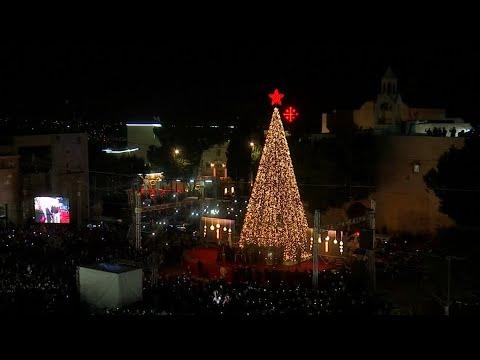 Ein Baum der Rekorde in Bethlehem
