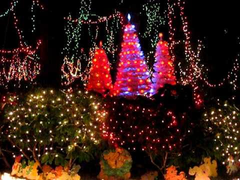 Paul Tudor Jones Christmas Lights