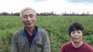 有機生産者インタビュー 十勝野菜村 遠藤 内査勝さん