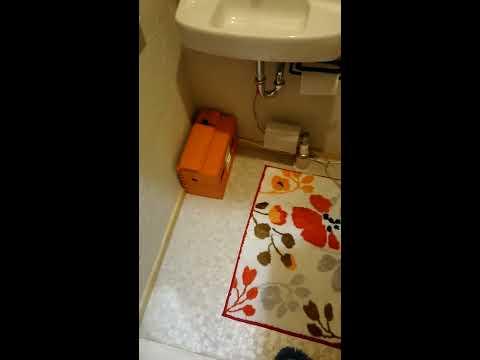 モーション トイレ トーキョー