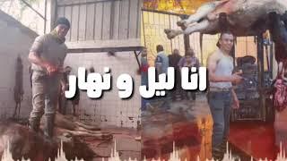 اخطر جزار حوده عصام فيديو جديد 😱😱