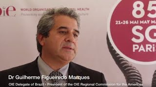 Dr Figueiredo Marques - President of the OIE Regional Commission for the Americas