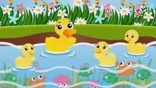 เพลงเป็ดอาบน้ำ รวมเพลงเป็ด 15 นาที เพลงเด็ก The kids song